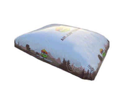 big air ski bag for sale