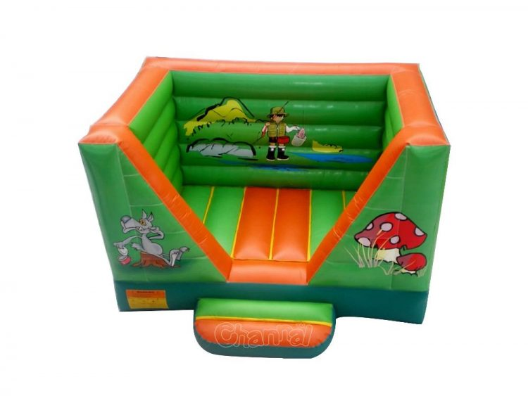 wild fishing fun inflatable bouncer