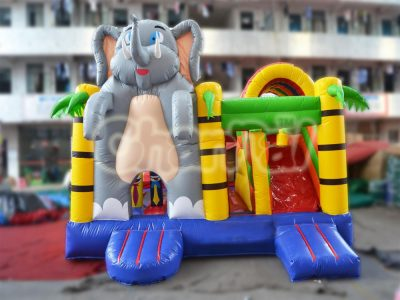 elephant slide combo