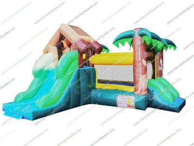 kangaroo theme small inflatable combo