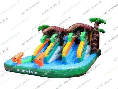 animal themed dual slide water pool
