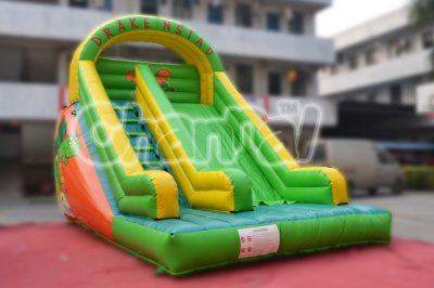 green dragon inflatable slide