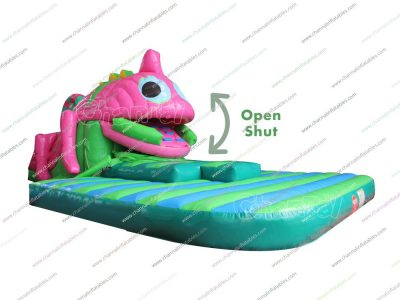 inflatable swallow slide