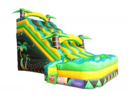 dual lane tropical water slide