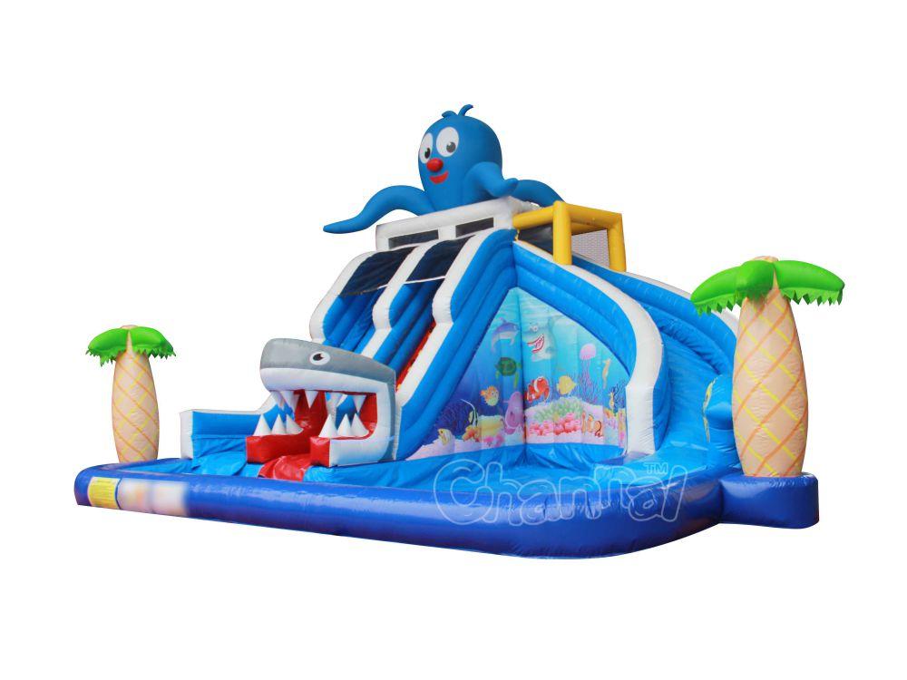 Ocean Backyard Pool Water Slide - Channal Inflatables