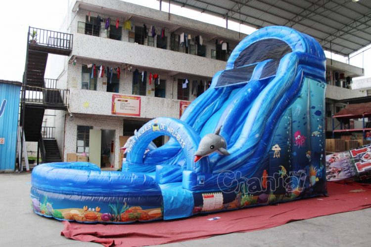 heavy duty ocean inflatable water slide for sale