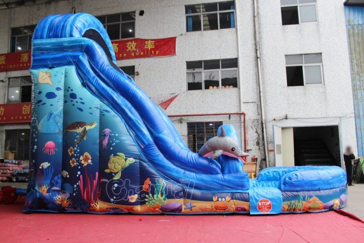 buy commercial quality ocean water slide inflatable