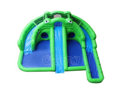 frog backyard water slide with pool