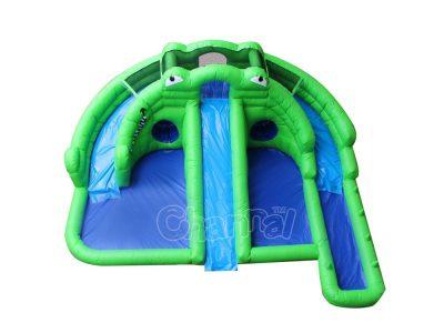 frog backyard water slide with pool