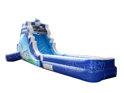 dolphin inflatable water slide
