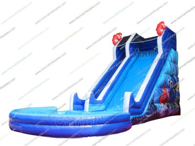finding Nemo inflatable water slide